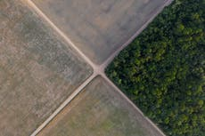 Brazil to redeploy troops to Amazon to fight deforestation