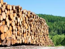 政府は「自然を保護する以上に自然を利用する」, MPは生物多様性の報告を酷評することで警告します