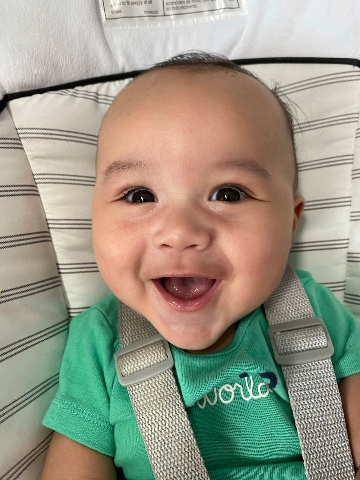 Florida baby picked as Gerber spokesbaby;' wins $25,000