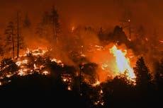 Heatwave 2021 - leef: Canada and US northwest temperatures soar towards 50C as 130 die and wildfires rage
