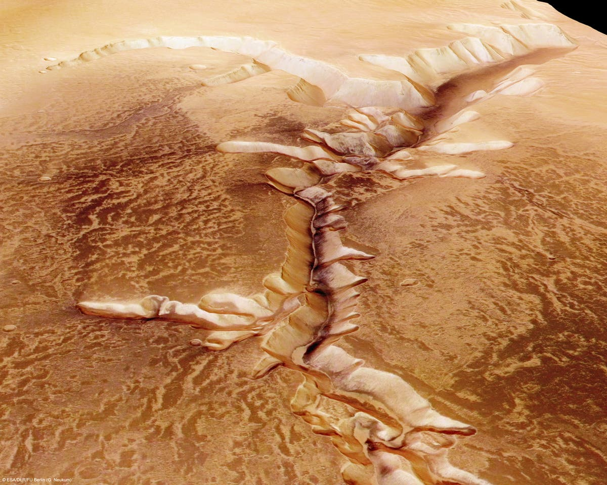 Nasa finds 'surprising' signals of subsurface lakes in Mars areas too cold for liquid water