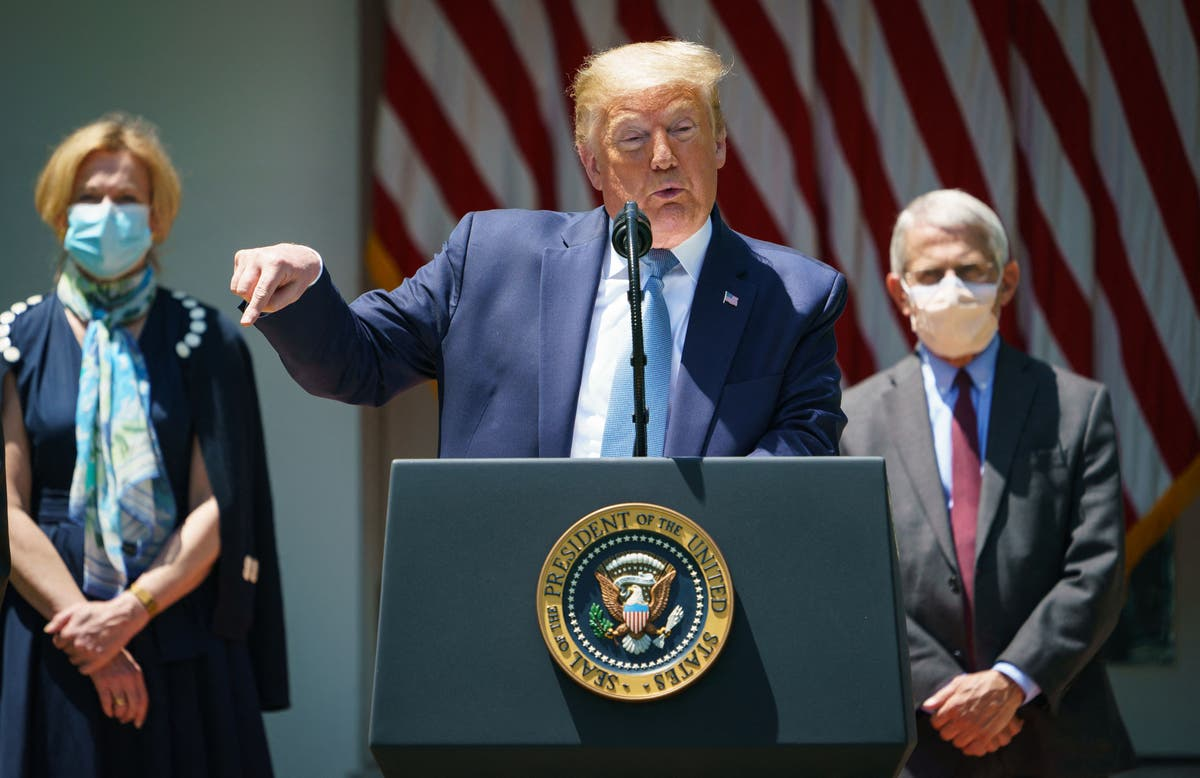 Trump called Dr Fauci's coronavirus task force 'that f***ing council that Mike has'