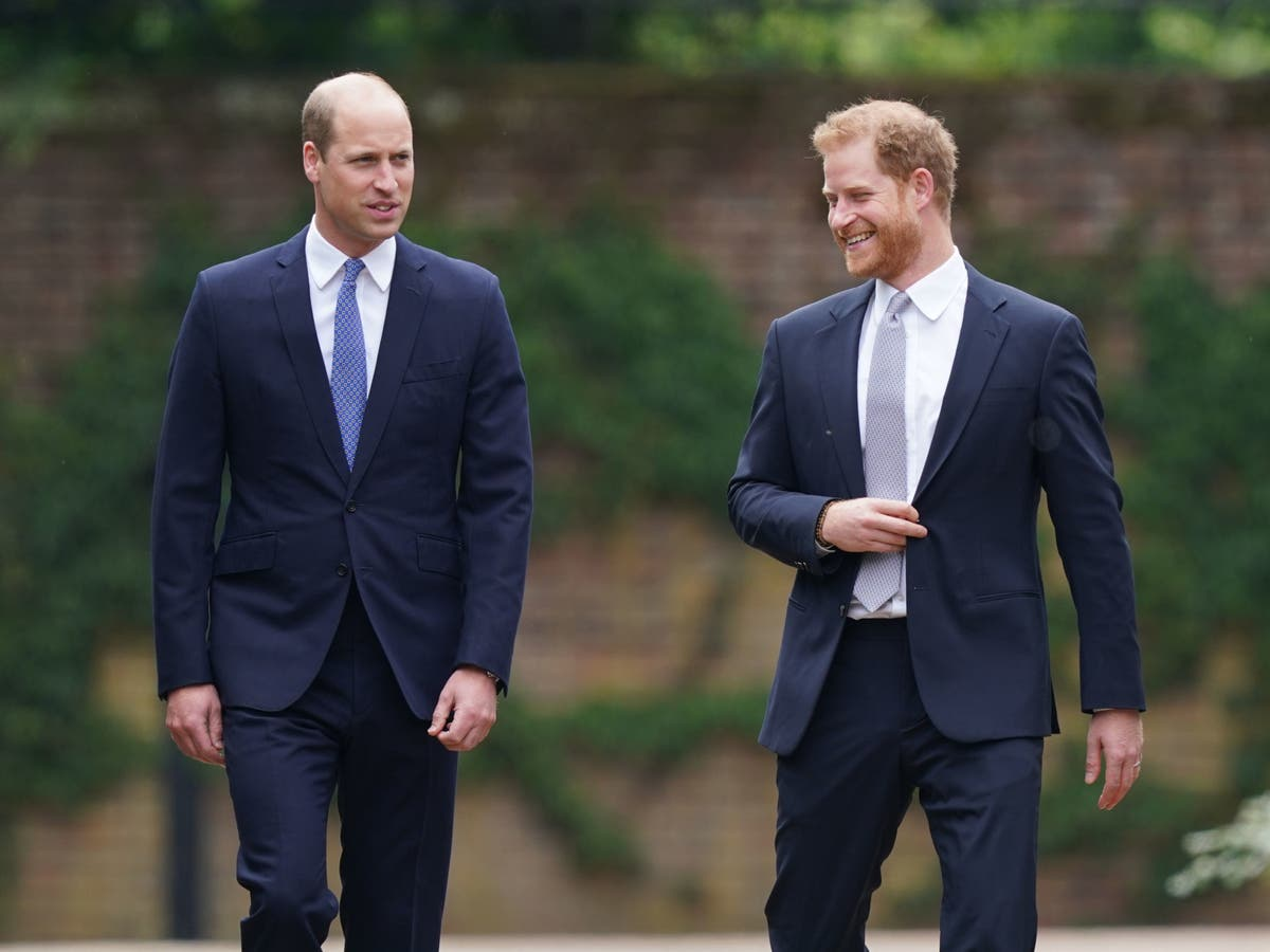 Harry and William put 'hurt feelings' aside for Princess Diana statue unveiling
