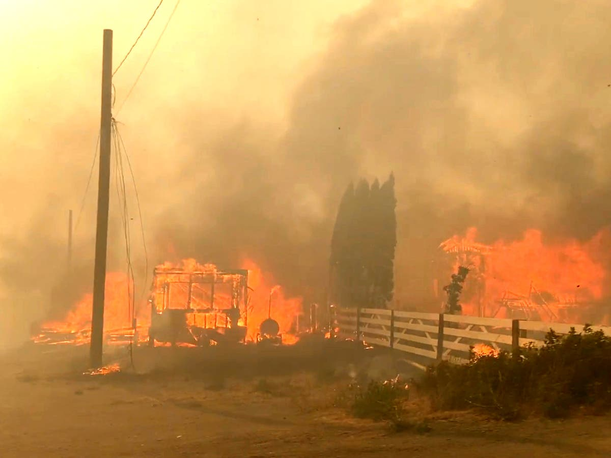 Conspiracy theorists descend on wildfire-ravaged Lytton to argue Canadian village was taken out by a massive laser