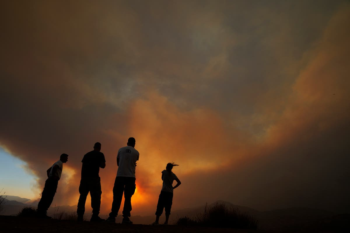 Chipre: 4 found dead in 'most destructive' forest blaze
