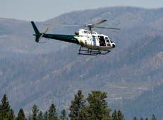当局はモンタナの町でキャンパーを殺したグリズリーを狩る