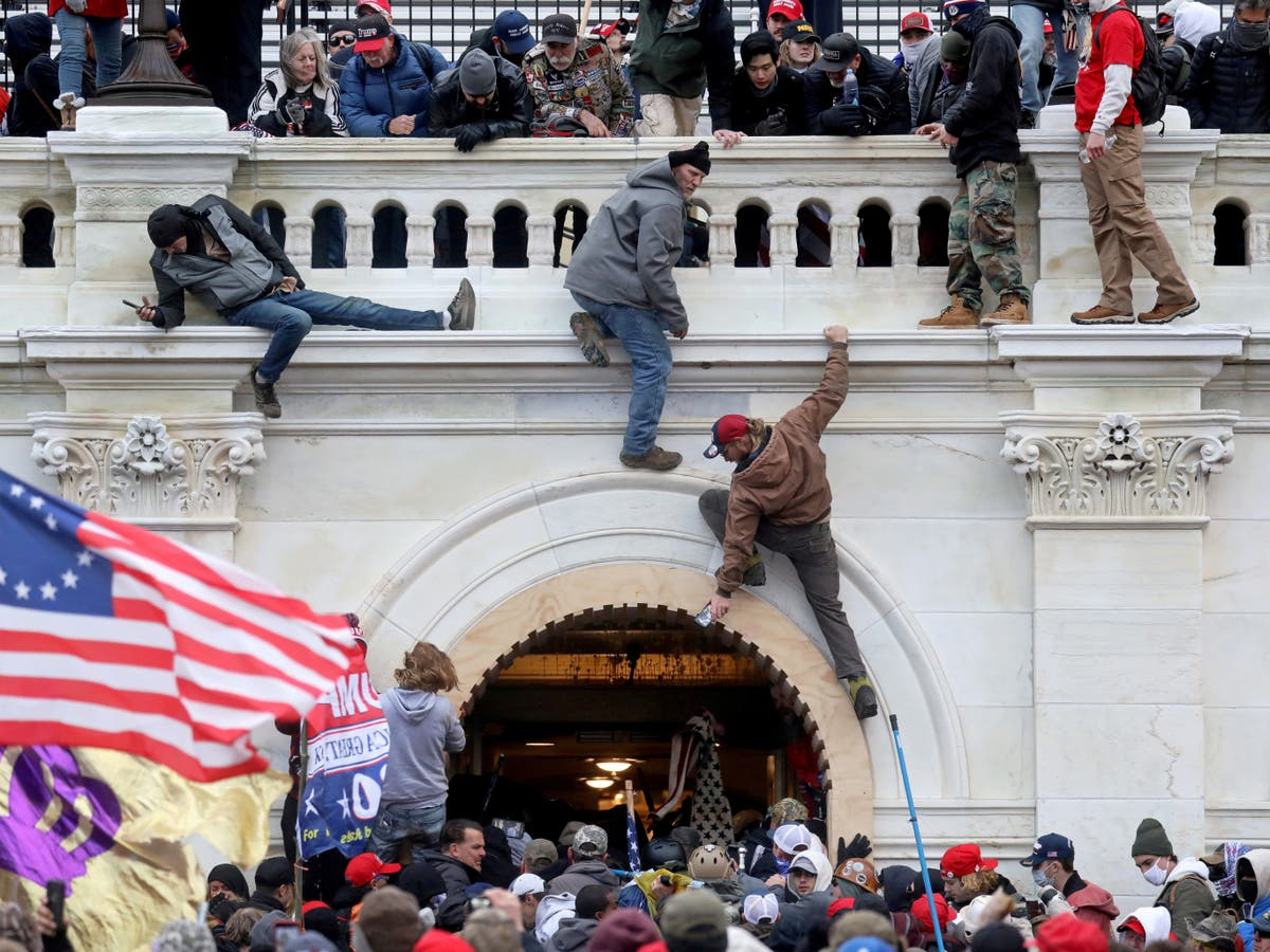 'The call to action was from the Don himself': Capitol rioters blame Trump for mob