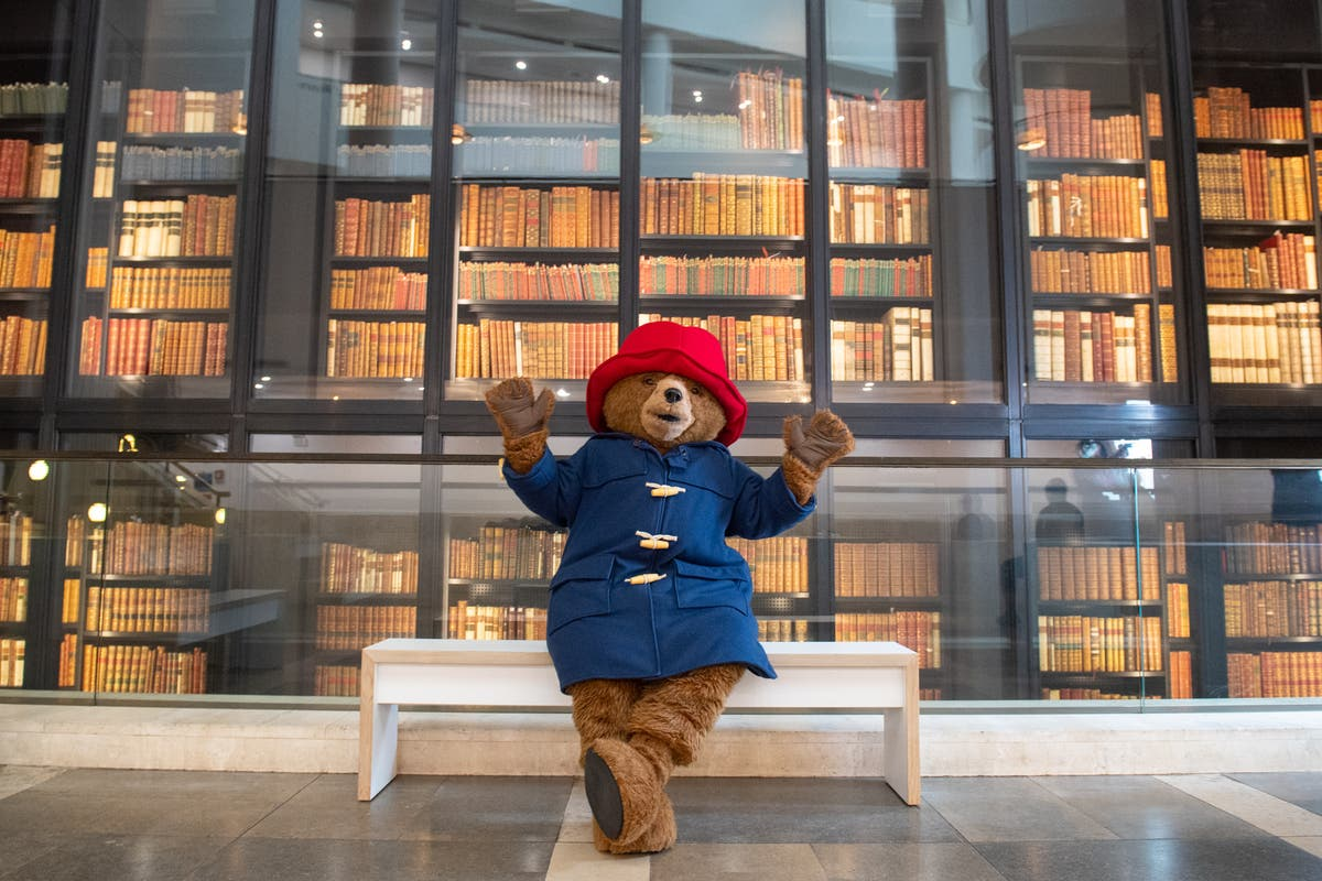 After a difficult year, a Paddington exhibition is just what we need