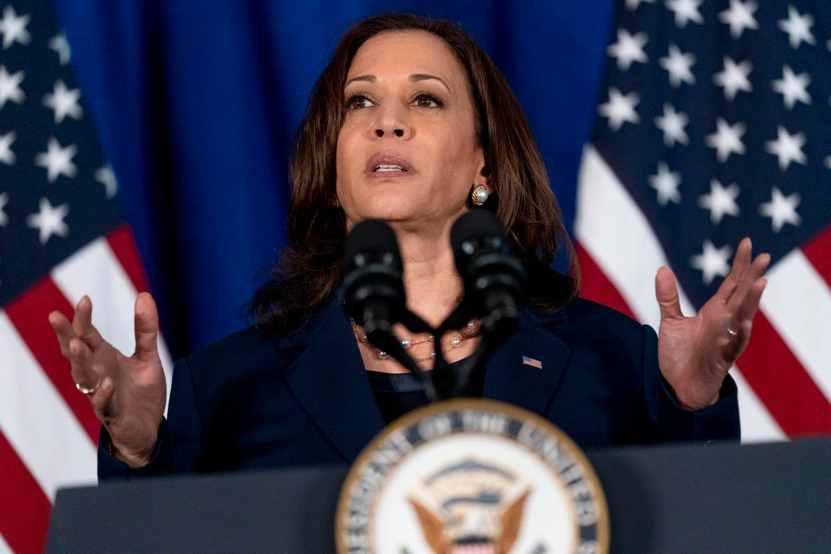 Kamala Harris and DNC announce $25m voting rights campaign