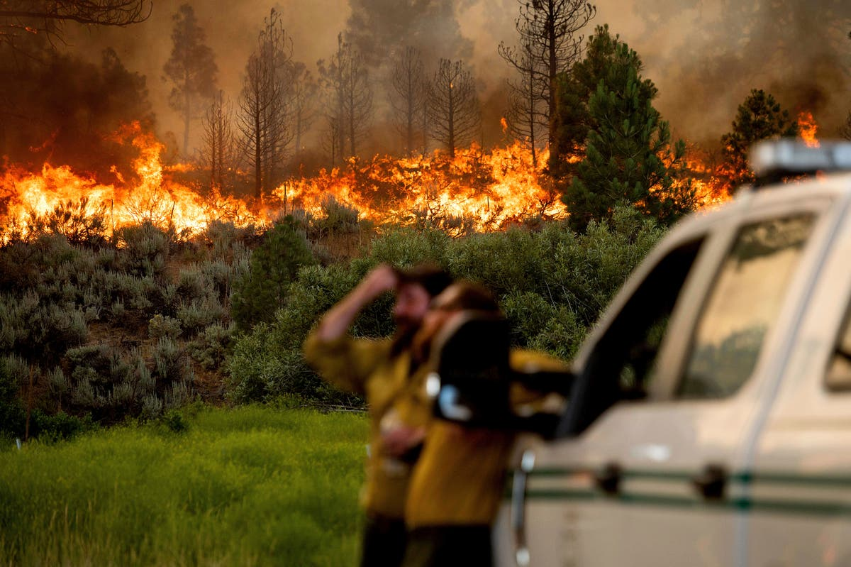 Heat wave blankets US West as fires rage in several states