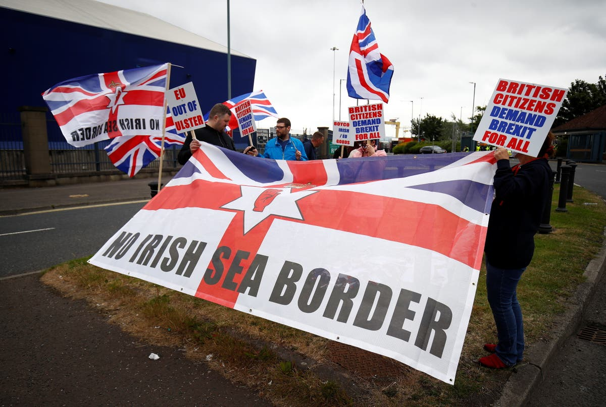 David Frost admits Brexit has made it 'too much trouble' for firms to trade with Northern Ireland