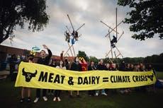 Animal Extinction protesters blockade McDonalds factory