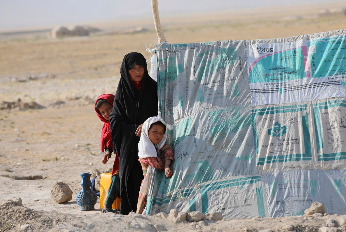 Taliban gains in Afghanistan putting key legal protections 'for women at risk'