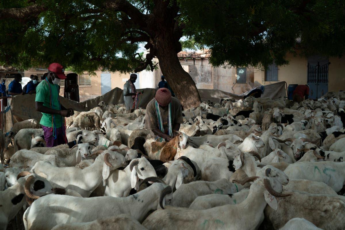 Senegal to celebrate Tabaski amid dramatic COVID-19 surge