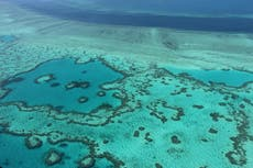 Unesco risking own 'credibility' over effort to reclassify Great Barrier Reef as 'in danger', Australia says