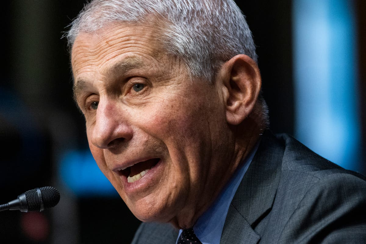 Fauci hits out over DeSantis t-shirts targeting him