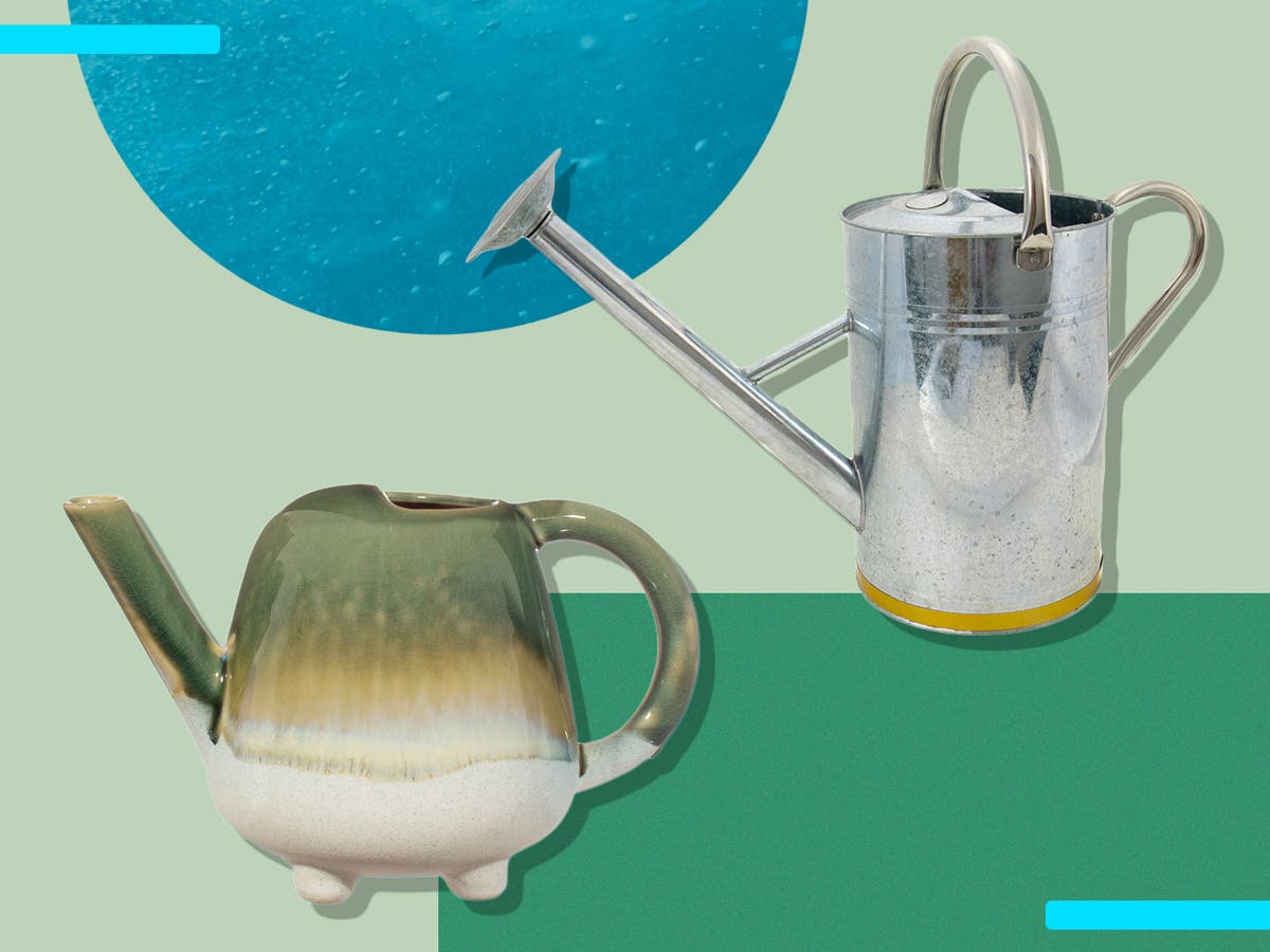 Keep your leafy friends hydrated with our best watering cans