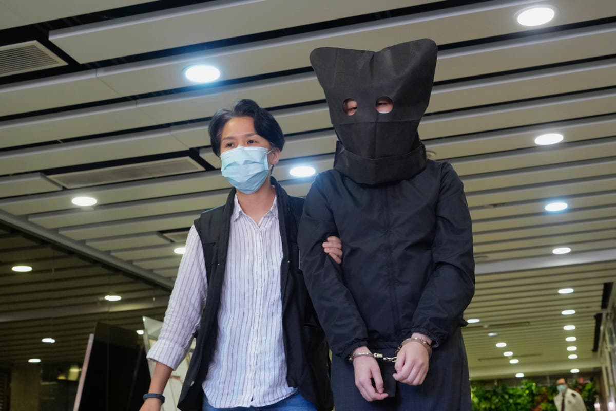 Five arrested in Hong Kong over children's books describing pro-democracy movement as sheep