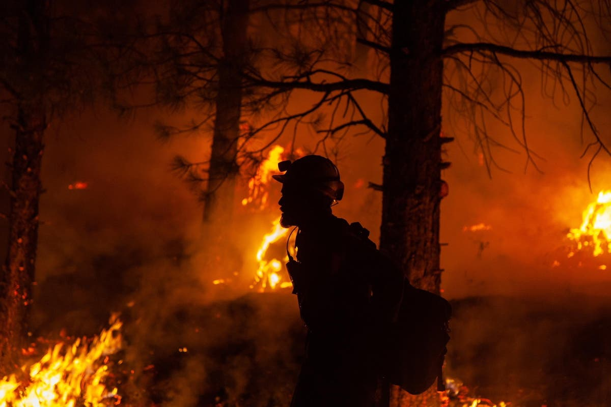 'A recipe for catastrophic fire': How the Oregon blaze became the United States's largest