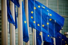 UK government orders councils to display EU flag as condition of receiving Covid high street cash