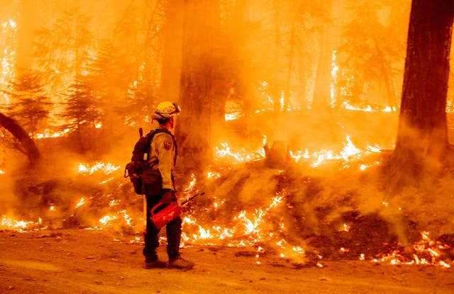A firefighter uses a drip torch to light a backfire in an effort to stop the spread of the Dixie fire in Prattville, 加利福尼亚州