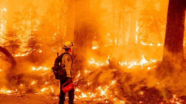 A firefighter uses a drip torch to light a backfire in an effort to stop the spread of the Dixie fire in Prattville, California
