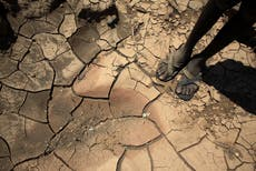 Covid-19 gives governments a timely cover for action on climate