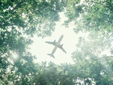 Is there a sustainable way to fly?