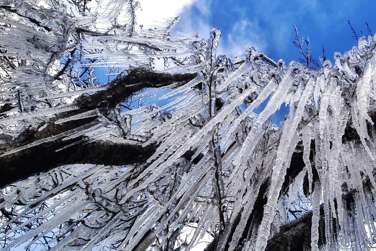 Une vague de froid anormal apporte des chutes de neige dans le sud du Brésil