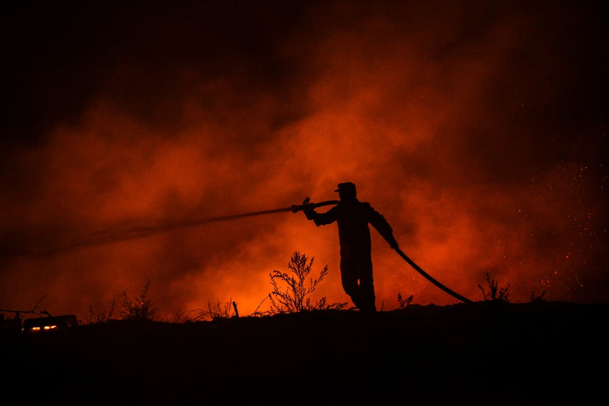 Death toll in wildfires that hit southern Turkey rises to four
