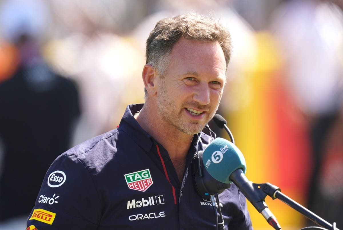 Christian Horner holds no personal grudge against Lewis Hamilton