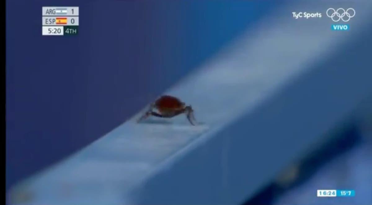 オリンピックのホッケーからゴキブリを撮影するために切り取ったために火の下で退屈なテレビカメラマン