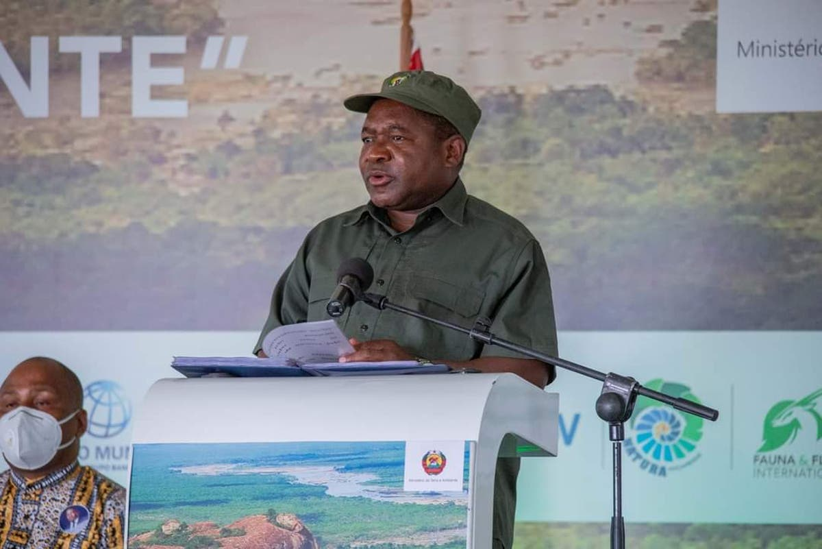 Mozambique pledges to protect wildlife