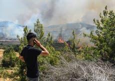 Die meerderheid van die Turkse veldbrande onder beheer, amptenaar sê
