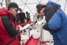 28 在冰川中发现科学未知的史前病毒