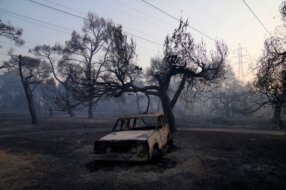 Les avions de lutte contre les incendies reprennent leurs vols au-dessus des incendies au nord d'Athènes
