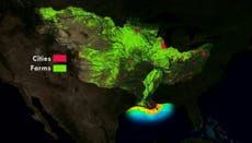 科学者たちは、メキシコ湾のコネチカットよりも大きな海の「デッドゾーン」を発見しました