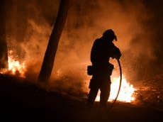 Greece wildfires: Volunteer firefighter among two dead as blazes rip across country