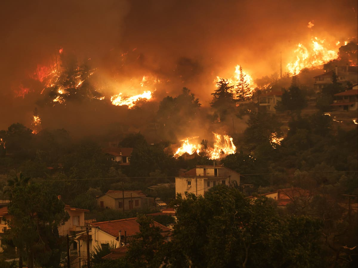 IPCC report 'code red for humanity' - follow live