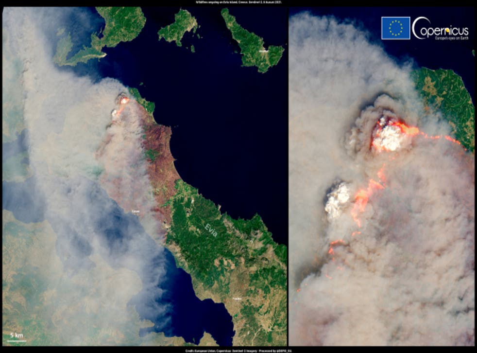 <p>Smoke fills the skies above Evia as wildfires rage on the island</p>