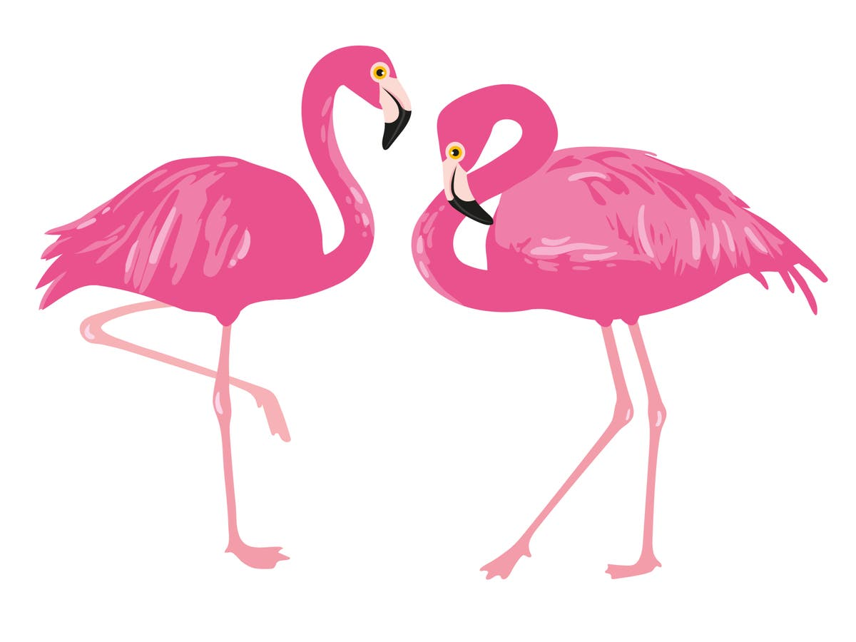 Guilty of pulling the 'flamingo' pose? There's a troubling reason behind why