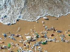 Coca-cola bottles make up 16 per cent of plastic waste on UK beaches, 分析により