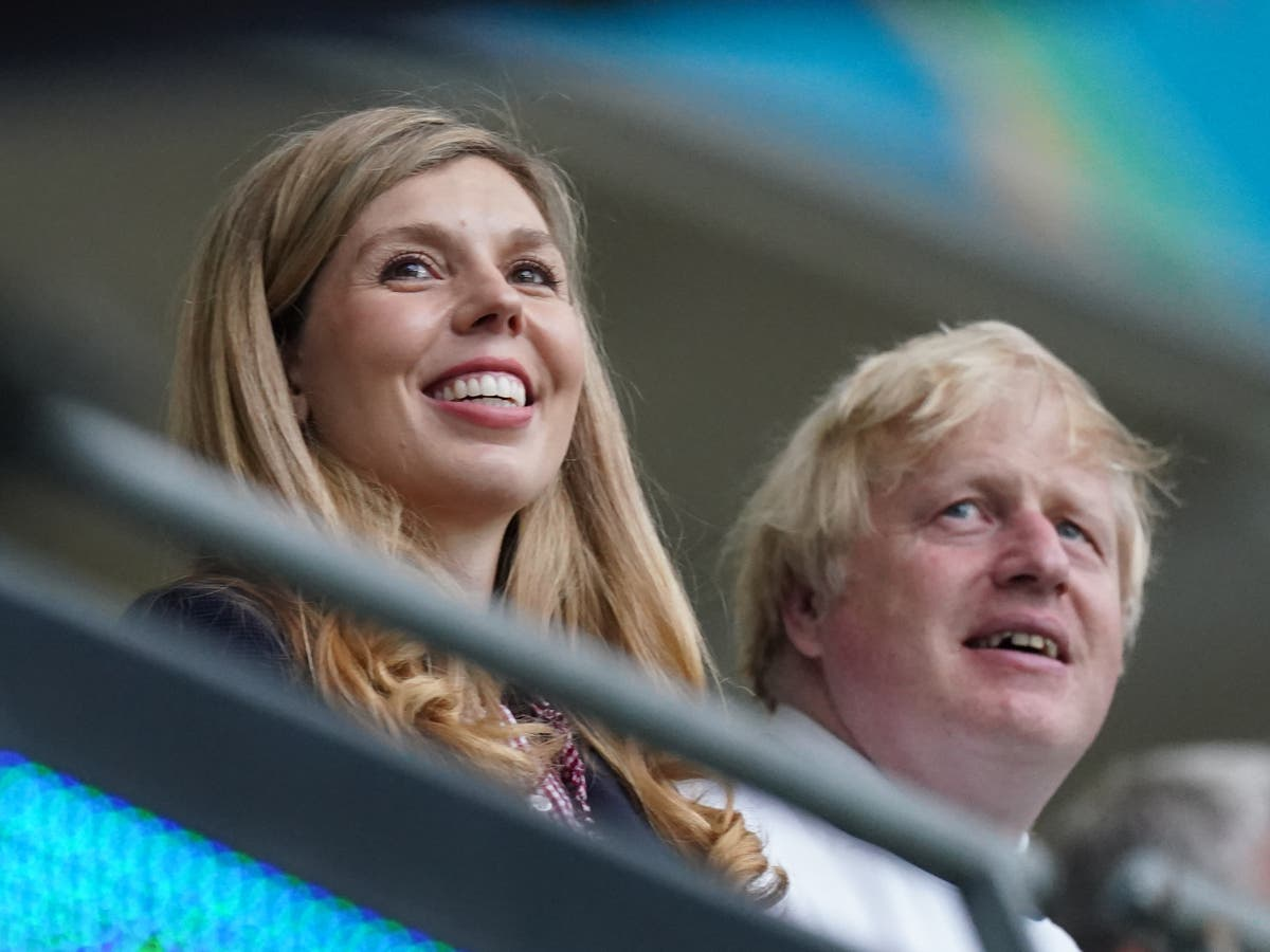 Tory donor who hired Carrie Johnson lobbied government over game reserve cash