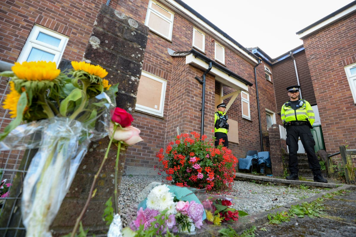 Plymouth shootings were not terror attack, senior police officer says