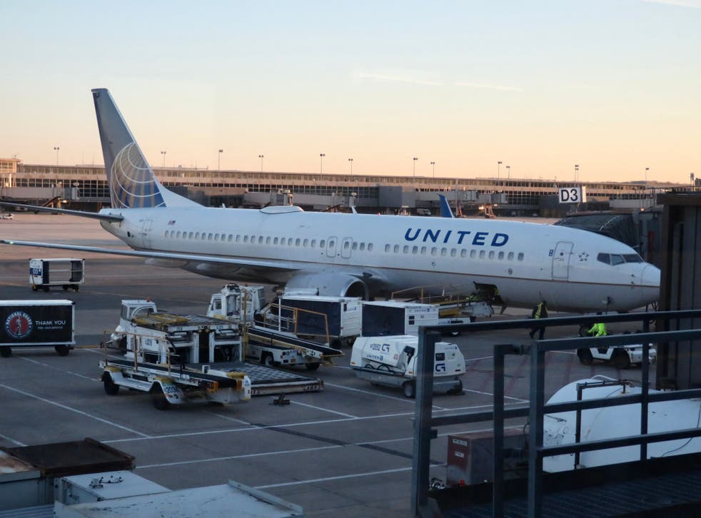 <p>A United Airlines plane at the gates of Dulles International Airport in Washington, DC </p>