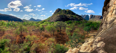 Mozambique forges new partnerships to protect biodiversity