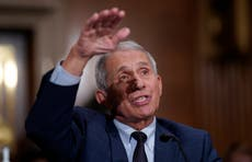 Fauci calls for unvaccinated Americans to be banned from air travel