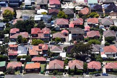 Sydney suburb orders residents to paint roofs white and plant a tree in every garden to tackle climate change