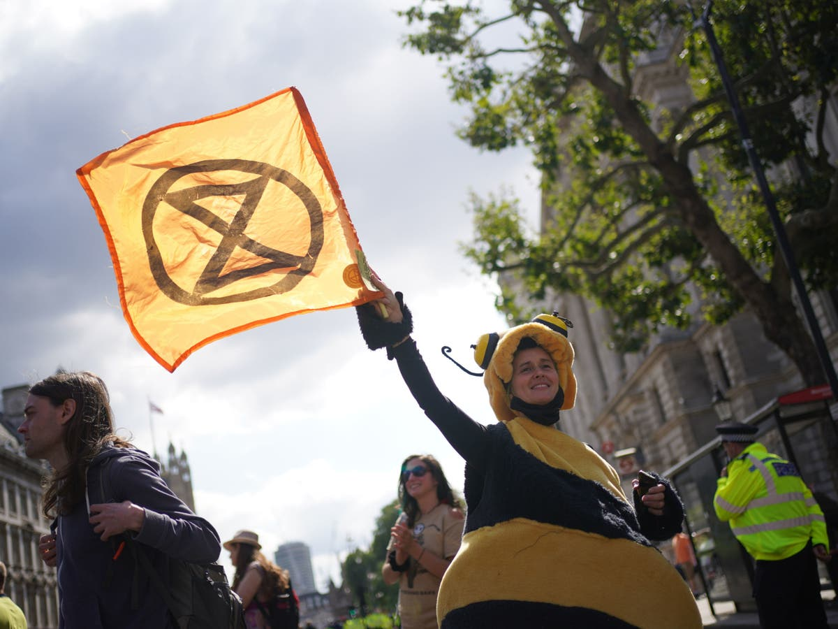 Beyond XR: How can the environment movement appeal to more conservative people?