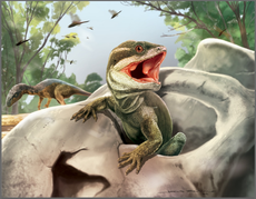 Scientists find fossil species that is ancient forerunner of most modern reptiles